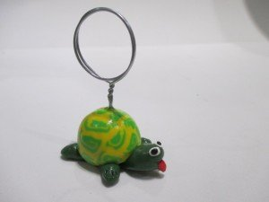 Repose photos  tortue